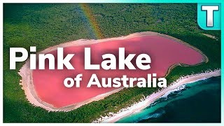 The striking beauty of Lake Hillier, Pink Lake of Australia